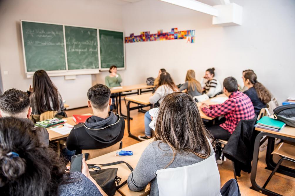 'Belçikalı' Bakan Türkçe derslerine karşı çıktı